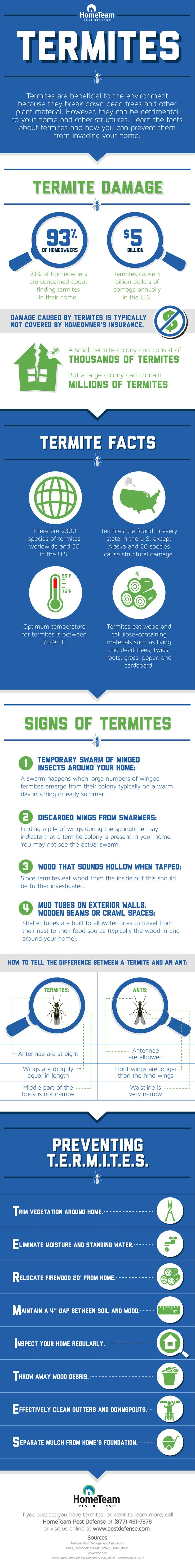 HomeTeam shares termite facts, signs and tips.