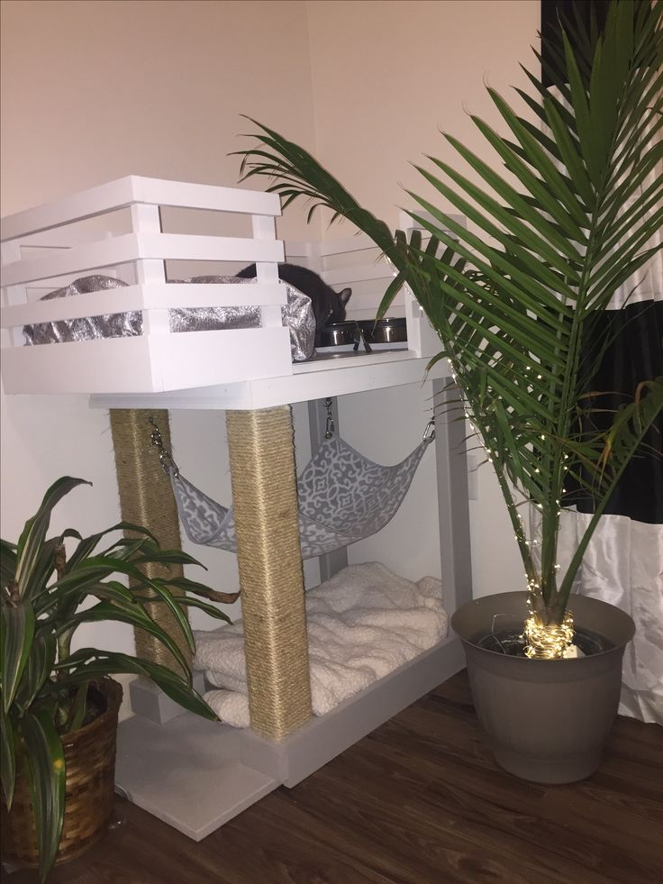 Bob's kitty condo/ cat condo/ catio/ cat apartment/ catdominium/ cat tree/ cat feeding station/ scratching post/ cat bed/ kitty hammock / kitty corner