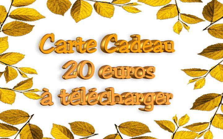 Chèque Cadeau 20 euros, Carte Cadeau, Bon cadeau, Bon d'Achat, à télécharger, dernière minute, surprise à offrir : Cartes par zenboutik