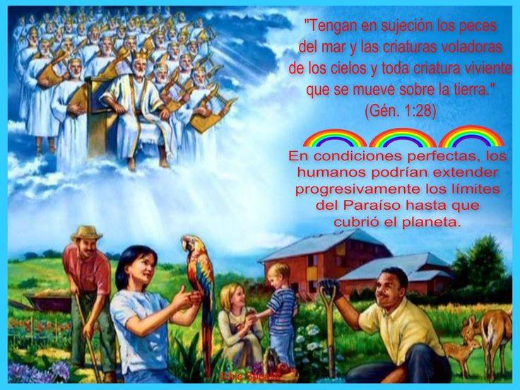 Genesis 1 28 2 26 15 Bible Education Website Jw Org