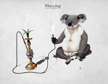 'What a drag!' by Rob Snow on artflakes.com  Fine Art America Prints art | decor | wall art | inspiration | animals | home decor | idea