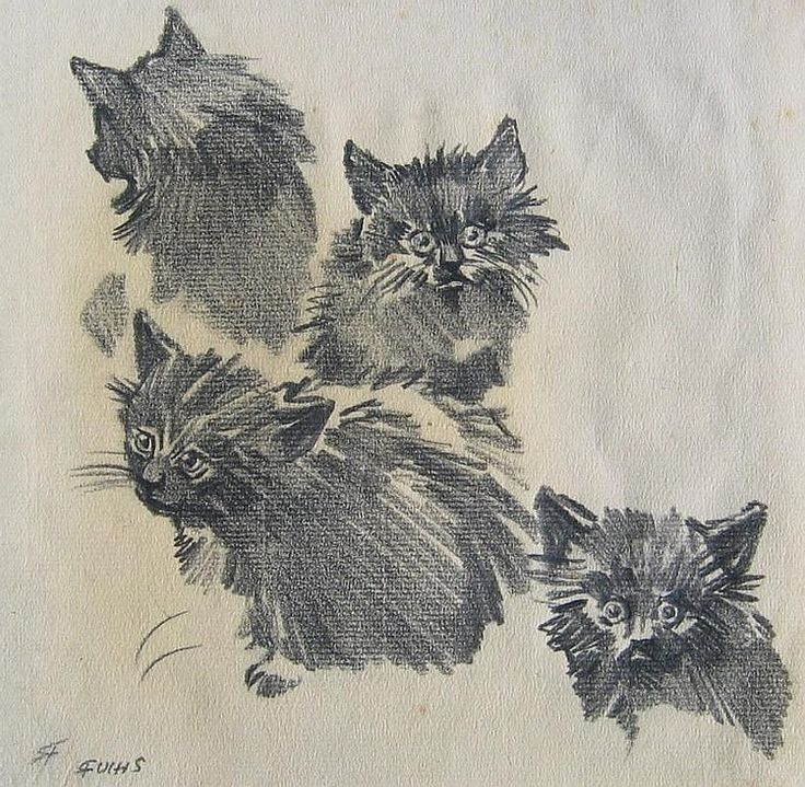 Sketch of cats, by Carl Froschl (Austrian)