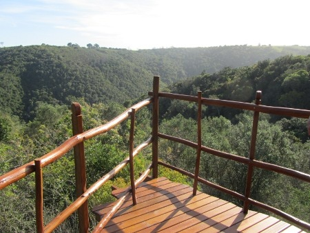 Tree houses in Africa! Incredible views and hikes