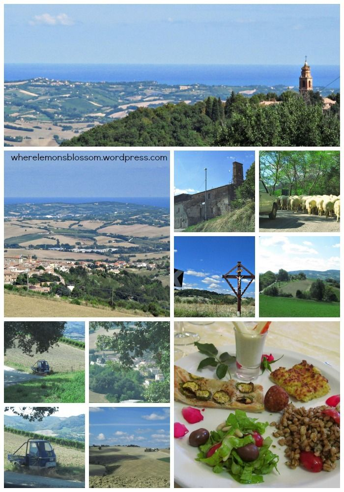 That's Marche, Italy