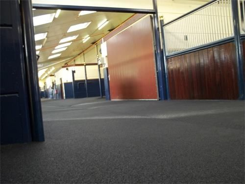 Horse lovers must know the importance of stable mat, which is said to be vital in making their pets healthy and free from any bacterial infection. http://www.stablesoft-europe.com/