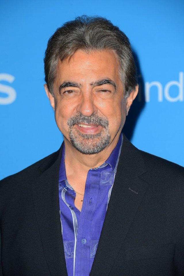 Joe Mantegna - Criminal Minds  Just like Joe. He's comfortable, just like an old shoe.