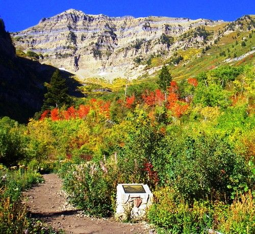 American Fork Canyon trails/hikes.