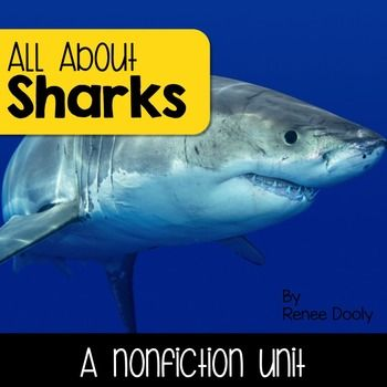 Sharks nonfiction unitThis is a comprehensive nonfiction unit on sharks. Check out the preview for some samples.Here is what is included:*Reading passages on (these can be printed as articles or projected):-All About Sharks-Bull Sharks-Great White Sharks-Hammerhead Sharks-Reef Sharks-Tiger Sharks-Whale Sharks-Sharks Adaptations-Sharks Pups-Where Do Sharks Live?-Shark Anatomy*Picture file cards for vocabulary words*Six videos attached to QR codes for your students to watch andrecord what…