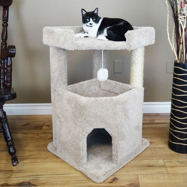 Dog Ate Some Rug: Best 25+ Cat Condo Ideas On Pinterest
