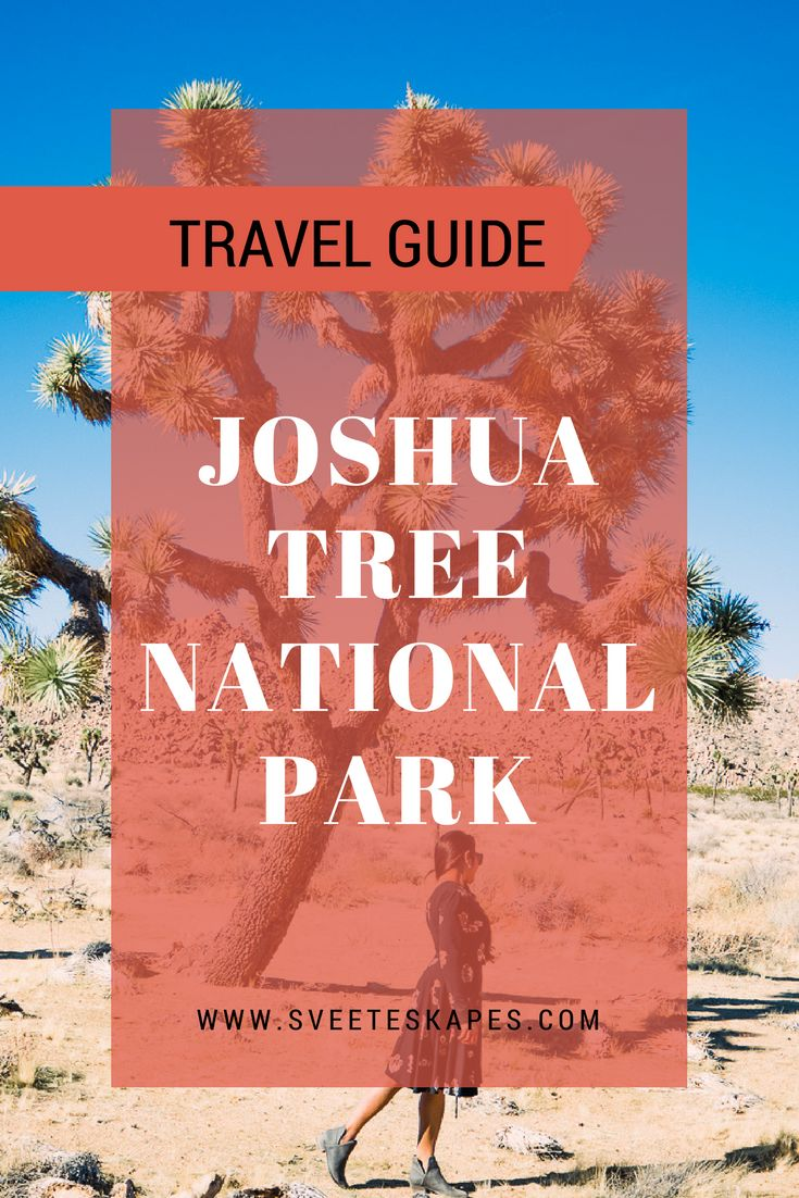 Visiting Joshua Tree had been on the radar for a while... I was so fascinated by it since the time I had first seen pictures of the very unique 'Joshua Tree' a few years back. So it was amazing to see it in person and admire its-own-kind-of-beautiful! Joshua Tree National Park is where two deserts meet - two distinct desert ecosystems, the Mojave and the Colorado. The variety of plants and animals, the landscape and scenery, the rocks and boulders, the sunsets and starlit skies are all one
