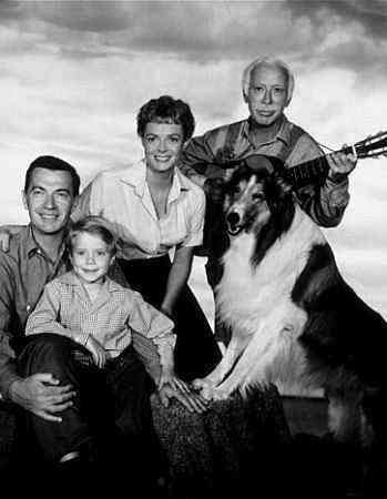 Promo photo with the Martins of the Lassie TV series (Paul- Hugh Reilly, Timmy- Jon Provost, Ruth- June Lockhart, Uncle Petrie- George Chandler & Lassie