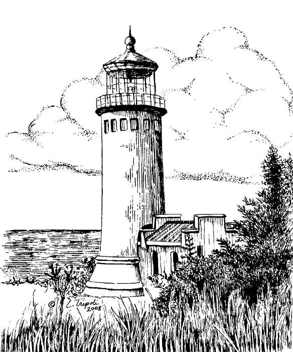 Lighthouse Drawings   North Head Lighthouse Drawing - North Head Lighthouse Fine Art Print