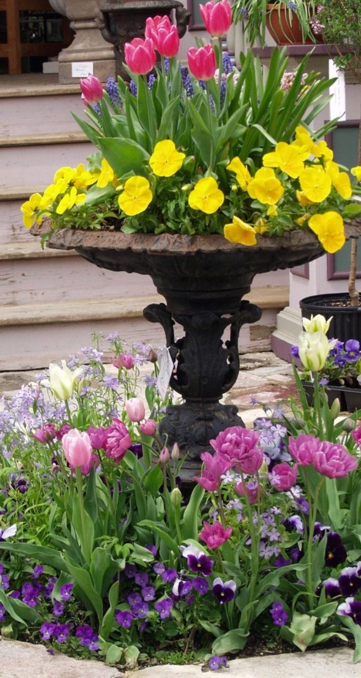 Spring Garden Ideas plant tulips and daffodils in the fall for a spring spectacular next year add in Gray Gardens