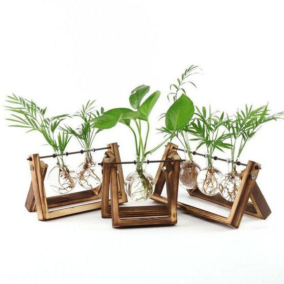 Glass Vase On A Wooden Plant Stand Glass Planter Water Plant