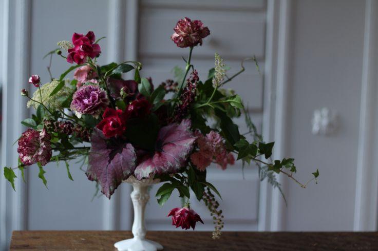Burgundy and begonia