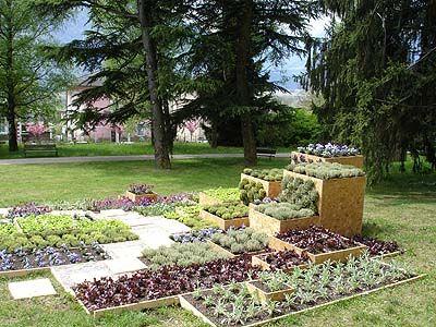 Raised vegetable plots
