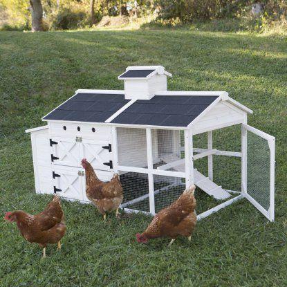 Boomer & George Cottage Chicken Coop | Hayneedle