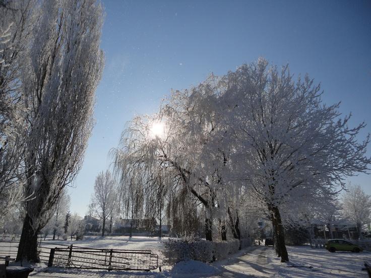 Winter at Bodegraven