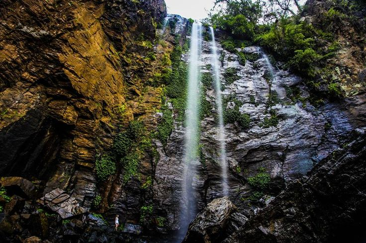 Ben Edmonds - Photography | Queen Mary Falls, Darling Downs region, QLD. #beautiful #waterfall