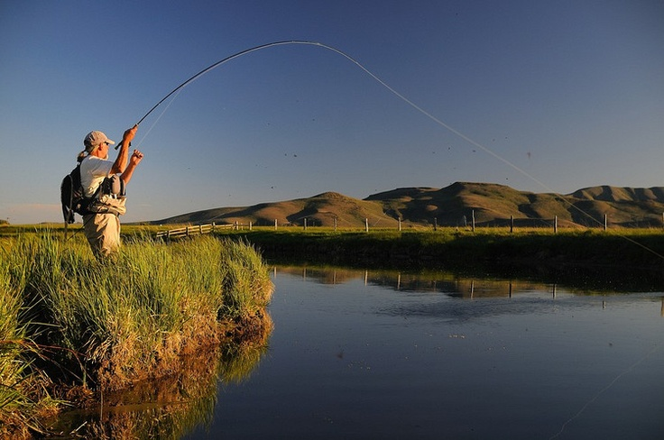 Silver creek idaho and the west pinterest for Silver creek idaho fishing