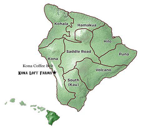 5 Quick Kona Coffee Facts Kona Coffee Can Only Be Grown In One Small on kona snorkeling map, pineapple tour map, hawaii tour map, kona hawaii, kona shopping map, kona beach map, ywam kona map, kona road map, kona state parks, kona makai map,