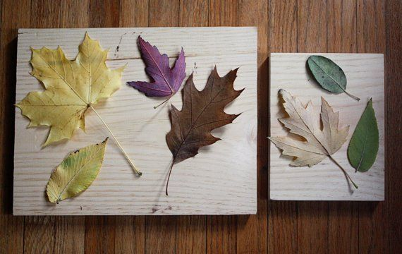 Maak dit prachtige kunstwerk van gevallen bladeren… een cadeautje van de natuur!