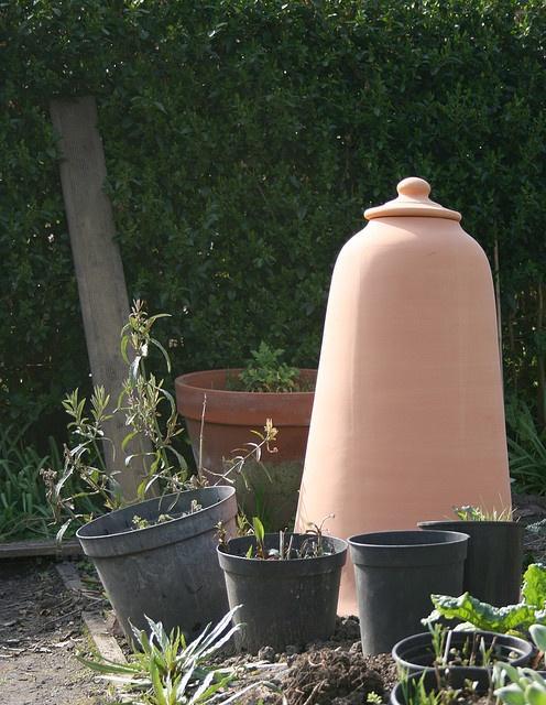 1000 images about garden cloches bell jars terrariums for Garden cloche designs