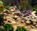Here's another dry creek garden, planted with succulents to hopefully get you inspired.  What do you think?