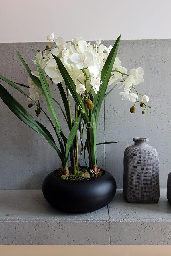 Elegancki, wieczny storczyk od tenDOM - wariant Japan