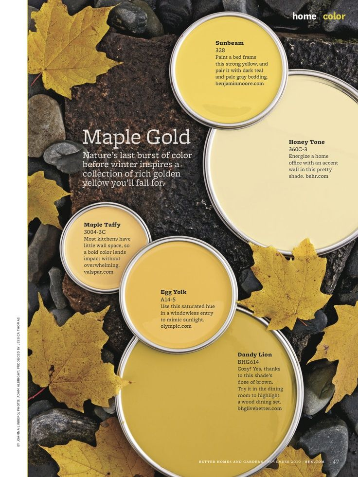maple gold paint colors from better homes u0026 gardens sunbeam by benjamin moore honey tone by behr maple taffy by valspar egg yolk by olympic dandy lion by