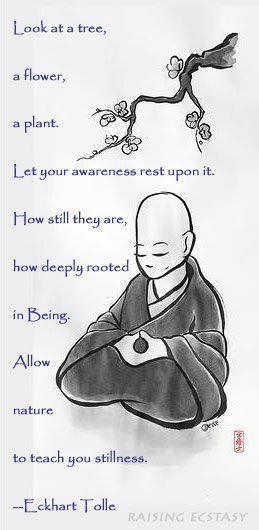cee2495e65ced38215b862ea5b2d76ae--mindfulness-meditation-mindfulness-practice.jpg