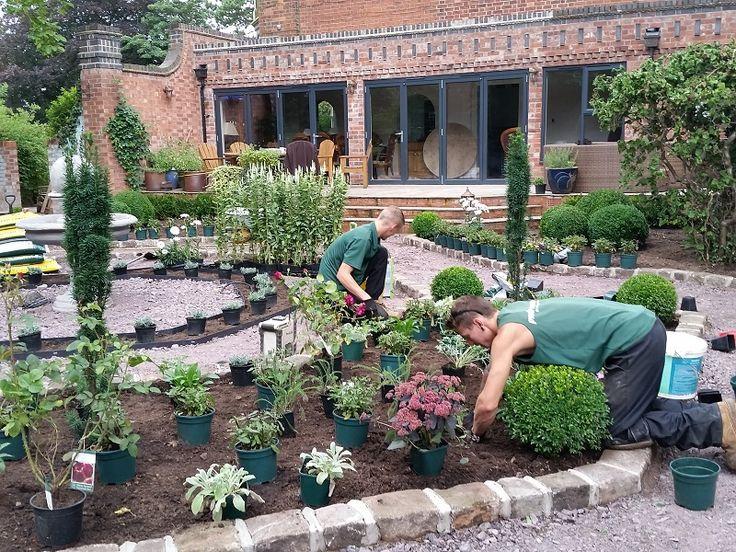 Garden Design & Planting #gardendesign #plantingdesign #shrubs #evergreenshrubs #boxballs #perennials #roses #lavender #englishgarden #victoriangarden #gardendesigncheshire #plantingdesigncheshire