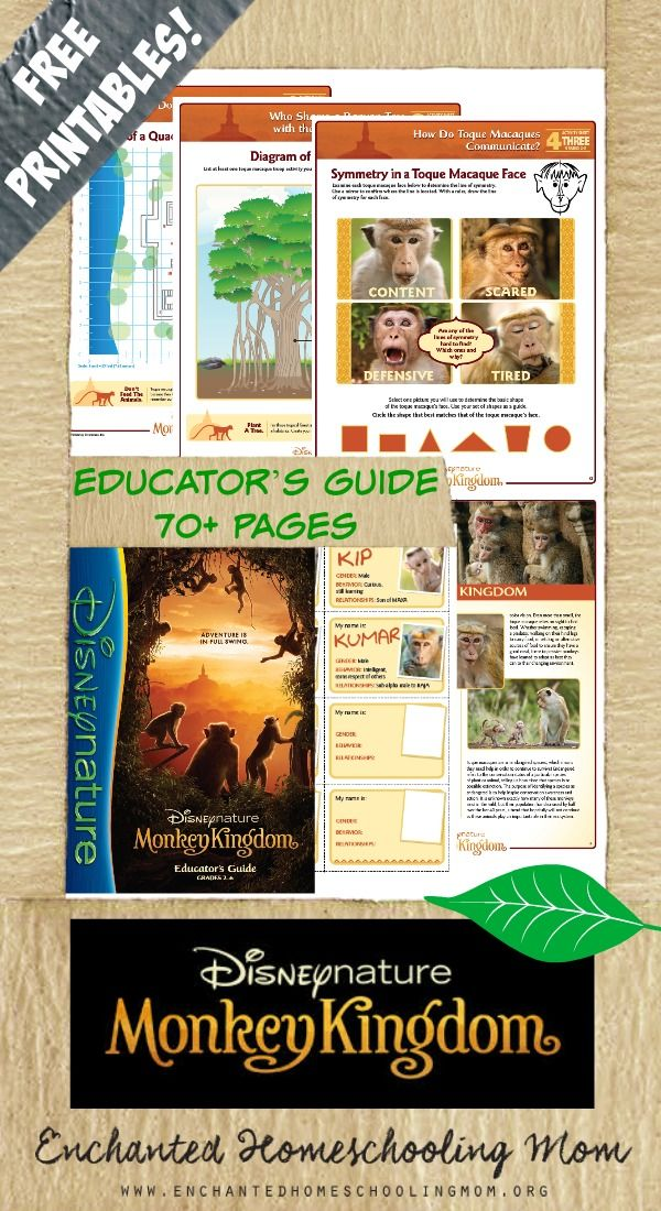 Disneynature films are not only but, but also a great way to sneak some educational fun into your lessons. The new Disneynature film Monkey Kingdom is coming to the big screen on April 17th, so are you ready to monkey around while learning? Then come get your FREE and informative Disneynature Monkey Kingdom Educator's Guide and Workbooks today! #MonkeyKingdom