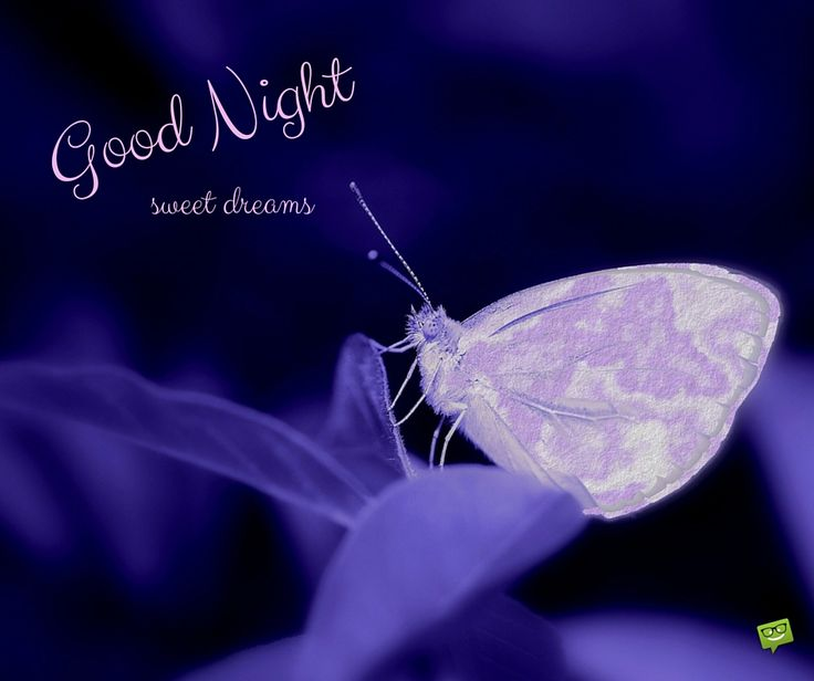 15 Goodnight Images to Share | Birthday Wishes Expert