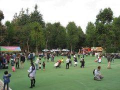 都内で思いっきり身体を動かして遊ぶなら明治神宮外苑にこにこパークがおすすめ スポーツ観戦やいちょう並木などで有名な明治神宮外苑ですが実はその一角に子どもが遊べる場所もあるんですよ()/ 砂場やブランコはもちろんターザンロープなどの遊具が充実しています 子どもの入場料が円なのも嬉しいですね tags[東京都]