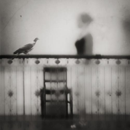 ghostingsPhotos, Deviantart, Deviant Art, Trippy Photography, Gabi Moel, Ghosts, Blur Reality, Art Site, Mystic Black