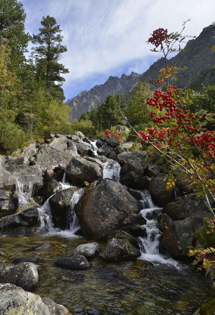 V obrazoch: Jeseň vo Vysokých Tatrách je malebná - spis.korzar.sme.sk