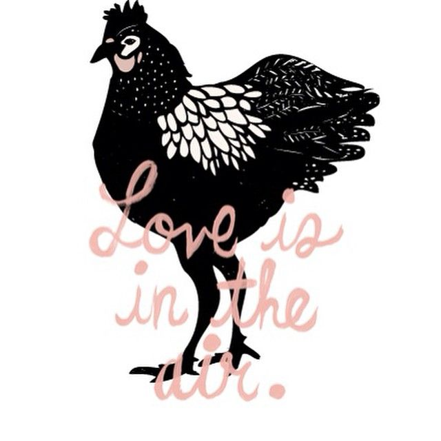 Der er noget i luften- chicken LOVE!! #høns #chicken #økologisk #øko #selvforsyning #forår #hønsehus #chickenlove #ha'endejligmandagaften #enjoy