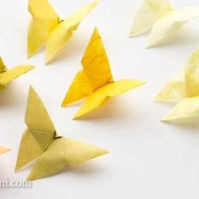 DIY origami Butterflies. Use these little beauties for crafts, in scrapbooking, or as paper jewellery. - A simple butterfly with a flower would make a great hair accessory.