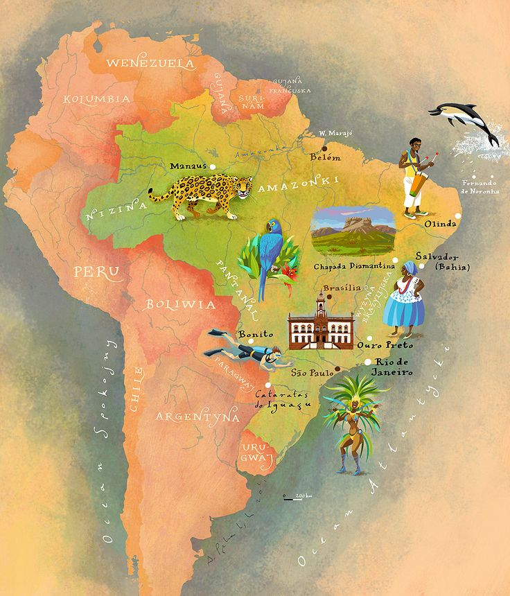 Best Many Spoonfuls Of Sugar Images On Pinterest Geography - Brazil map illustration