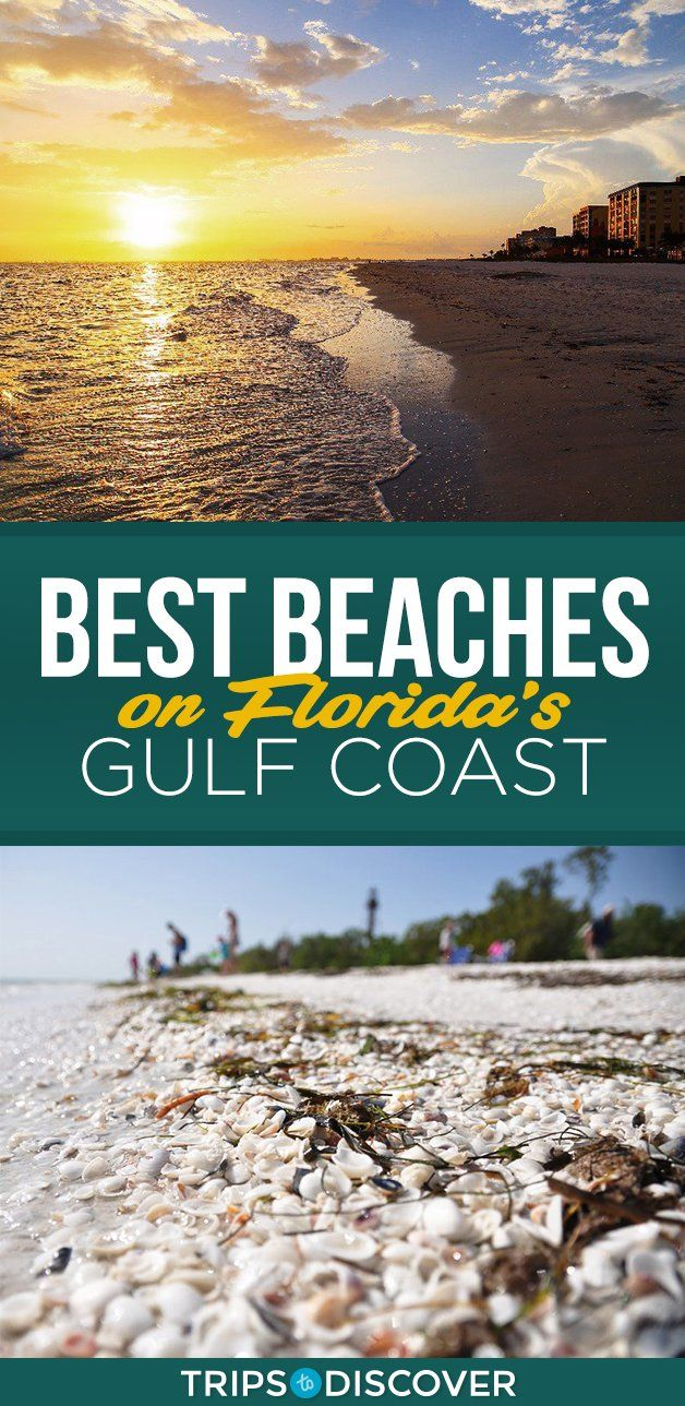Find Your Bliss At These 13 Beaches On Florida S Gulf Coast Florida Gulf Coast Beaches Gulf Coast Florida Gulf Coast Vacations