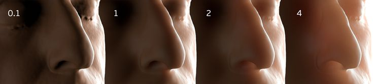 SSS Layers - Arnold for Cinema 4D User Guide - Solid Angle