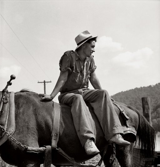 """September 1938. Racine, West Virginia. """"Farmer's son who helps make sorghum molasses from sugarcane."""" Photo by Marion Post Wolcott."""