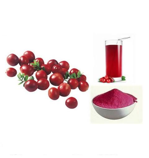 Cranberry Extract ,Cranberry Extract 100:1,Natural Cranberry Extract 200g hot sale