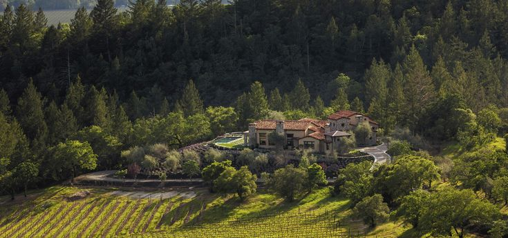 Two luxury homes occupy the sprawling estate, but the listing agent believes the right buyer of 730 Adobe Canyon Road should insist on touring the palatial homes only after traversing the grounds. Approved plans for five-bedroom homes come with Casa Paraiso and Casa Lago, the vacant lots included in the transaction. Casa La Vid, the residence at 730 Adobe Canyon Road, offers finishes of Sonoma fieldstone, dappled stucco and reclaimed hardwood. The great room's open-beam ceiling and ...