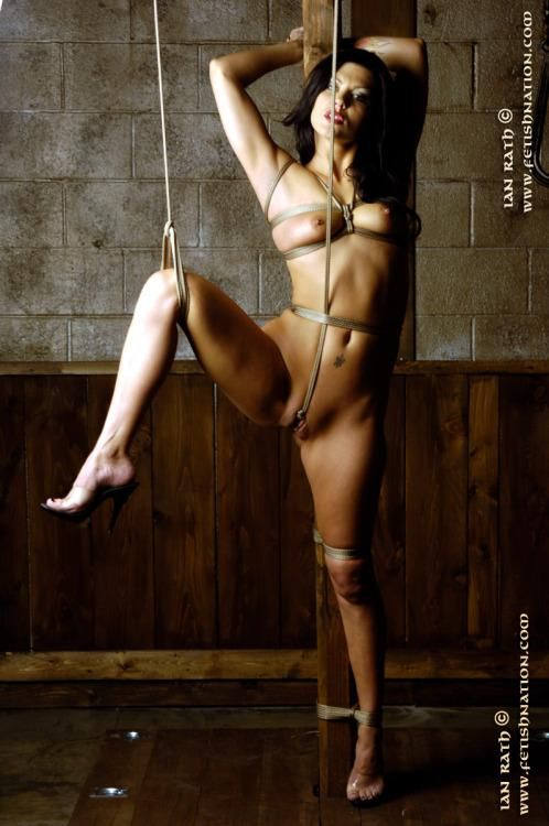 Get good crotch tied