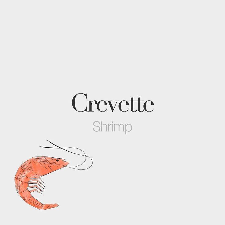Crevette (feminine word) • Shrimp • /kʁǝ.vɛt/ • Drawing: @beaubonjoli