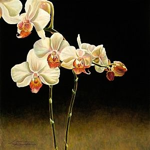 """ღღ """"Orchid Genesis I"""" by Lauren Knode Pastel ~ 32 x 32"""