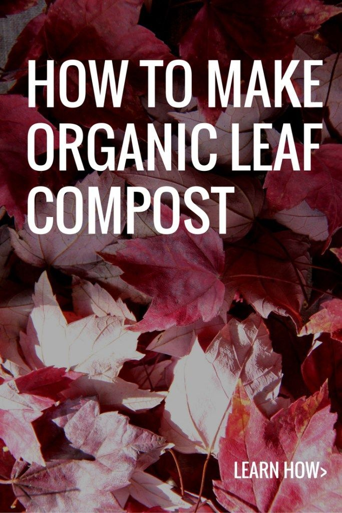 Make Organic Compost by Composting Fall Leaves | Home for the Harvest Blog