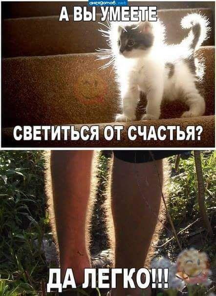 """""""Вместо меня Таня гладит свои волосатые ноги"""""""